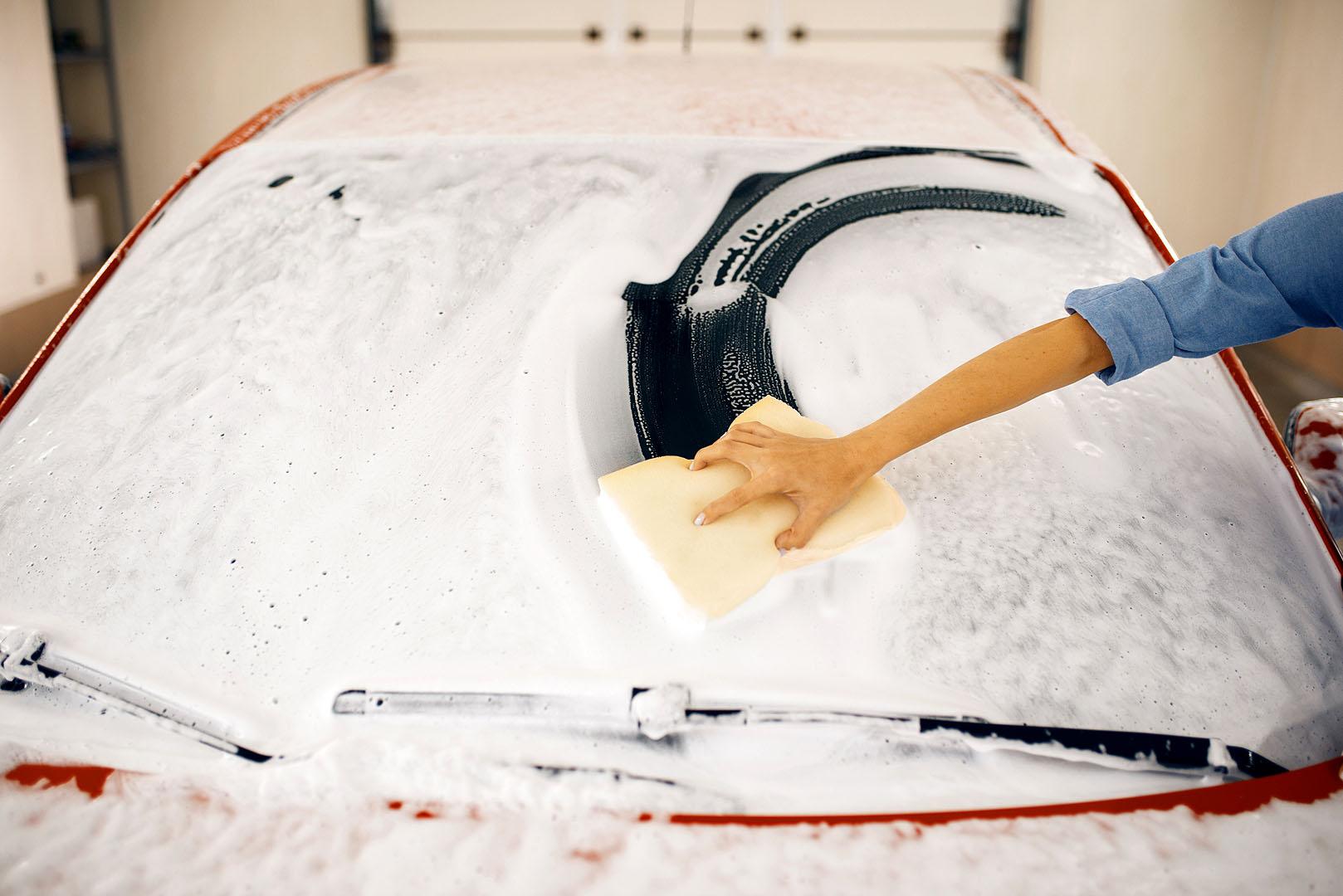 Fahrzeugwäsche und Desinfektion